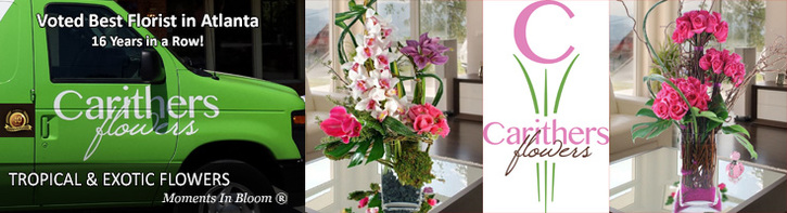 Exotic Tropical Flower Arrangements