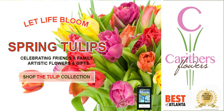 Deliver fresh Holland tulips from Carithers Flowers, Voted Best Florist in Atlanta