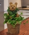 Ivy Topiaries -NEW!