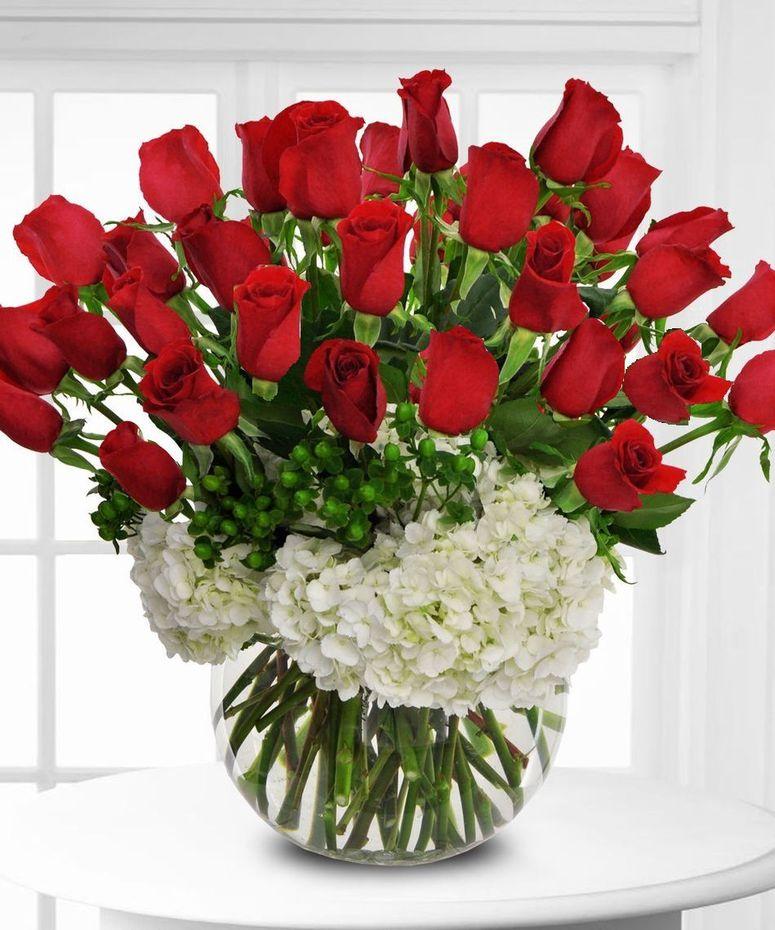 Roses Marietta