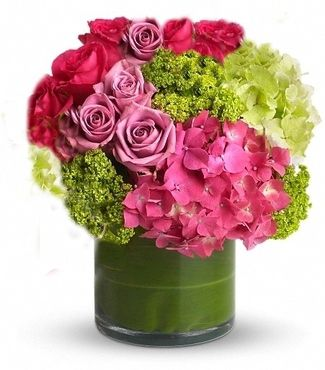 hydrangea, hydrangeas, hydrangea flowers, carithers flowers edu center, Beautiful flower