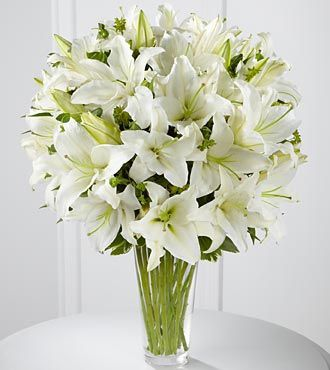 white lily, white lily flower, white lily flowers, Beautiful flower