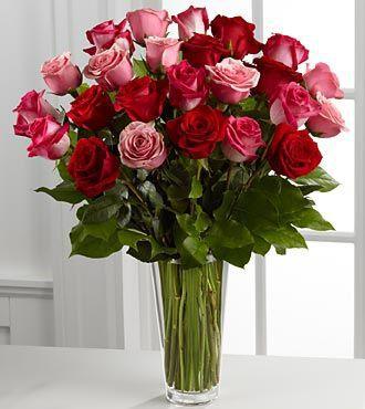 Roses Austell