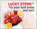 Click & Try Your Luck – Be Our Instant Winner of the Day!